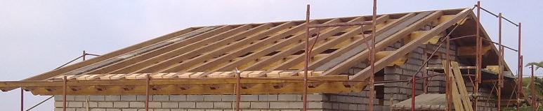 Cemento armato o legno verr fatta la caldo freddo ci sar for Piani di casa sul tetto per costruire